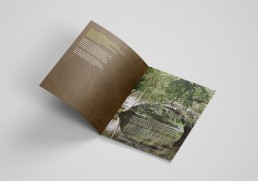 Woodland Trust report spread